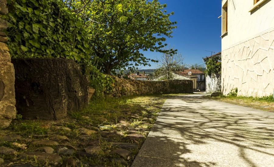 Calle Falagueira. Monforte