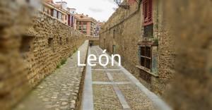 LEON-DESTACADO-VC